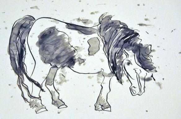 Pony no364